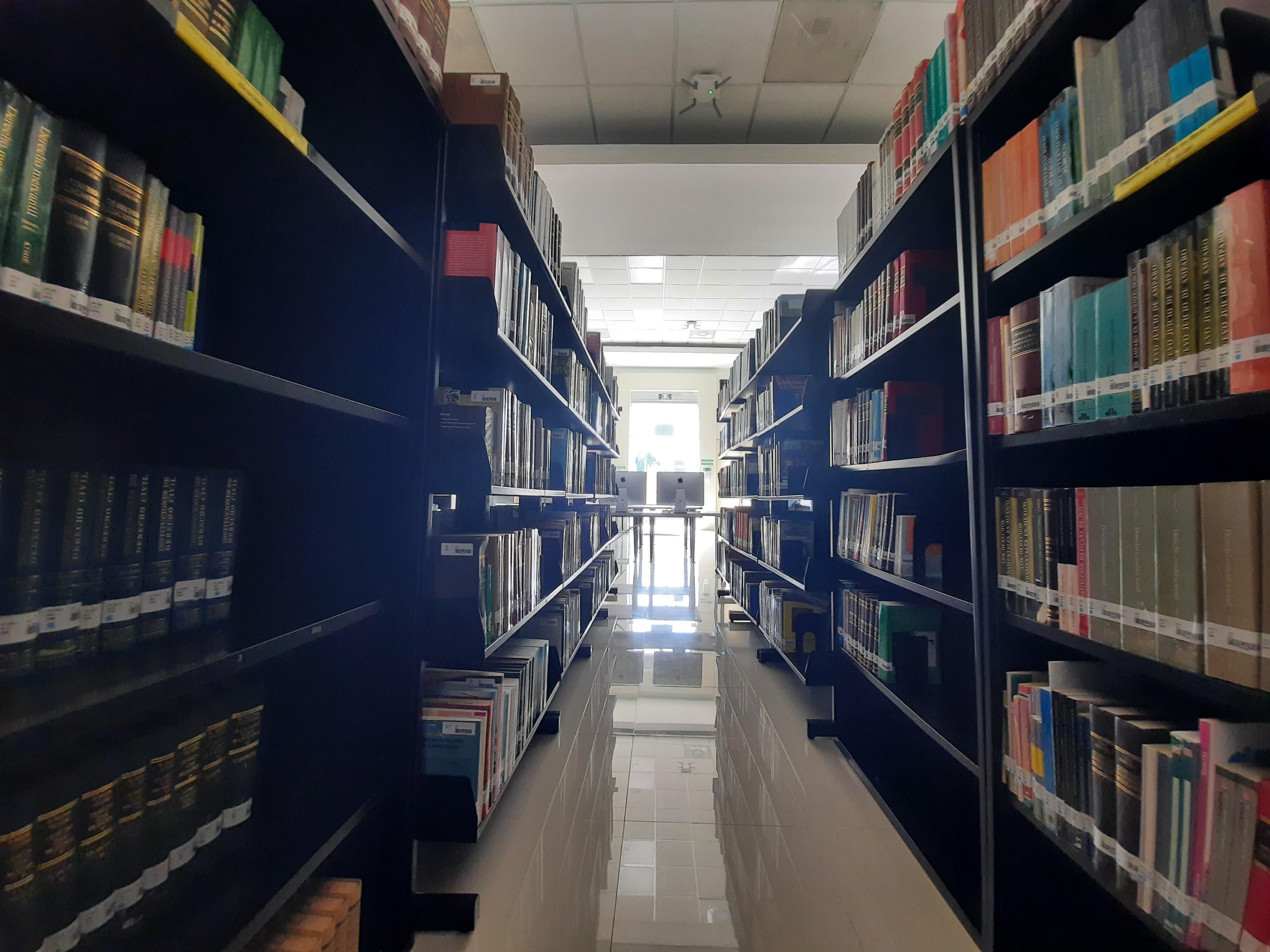 Biblioteca_01 (2)